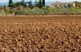 mezőgazdasági ingatlan értékbecslés